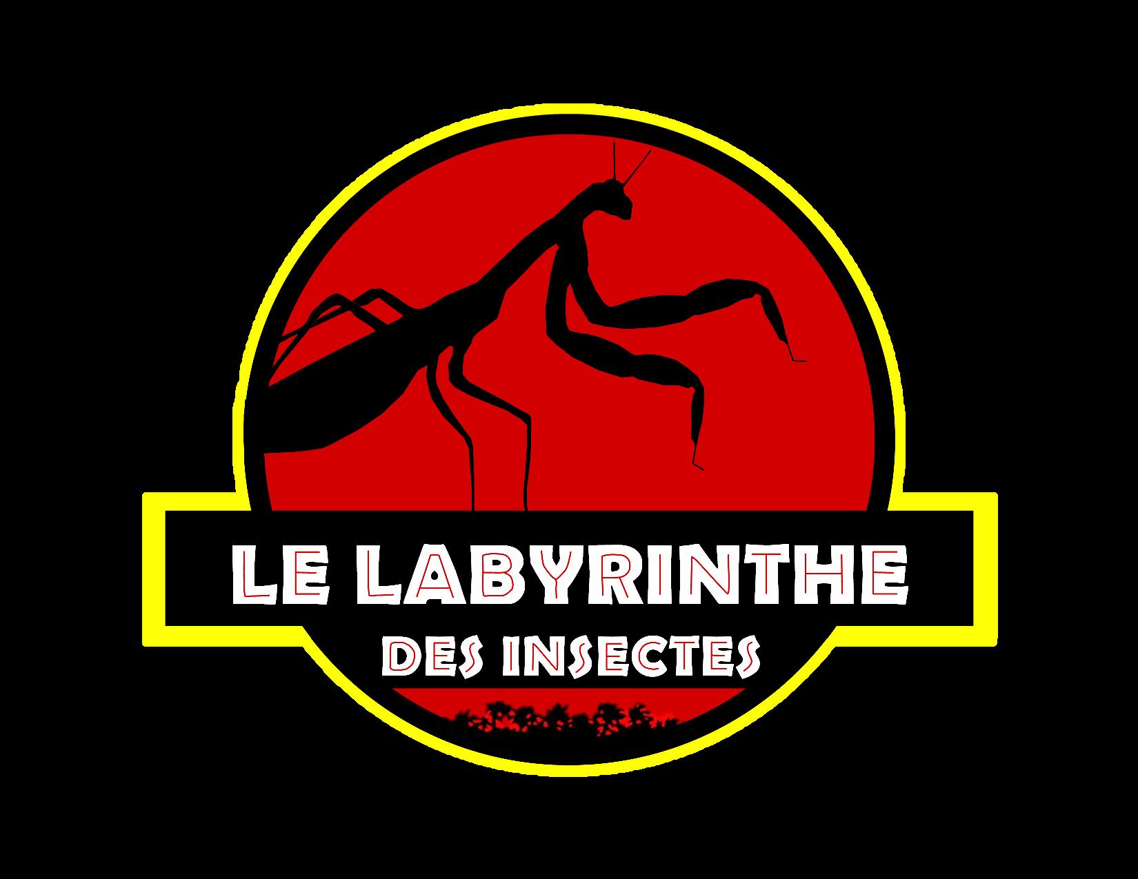 Labyrinthe des insectes